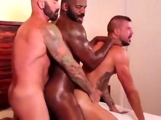 group sex (gay)  daddy (gay)